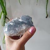 Celestien ruw XL|Gekristalliseerde edelsteen|A-Kwaliteit|100 x 80 x 60 mm_