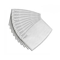 PM2.5 Filter|Activated carbon filter|Set van 10 stuks